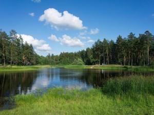 Внесены изменения об ужесточении требований при нарушении требований охраны водных объектов, правил водопользования и правил эксплуатации водохозяйственных или водоохранных сооружений и устройств в КоАП РФ