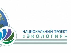 «Экологический путь России должен стать передовым». Задачи 2019 года нацпроекта «Экология» по регионам представлены в СФ РФ